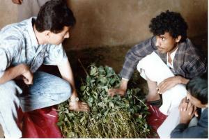 Buying qat to chew in Sana'a, Yemen